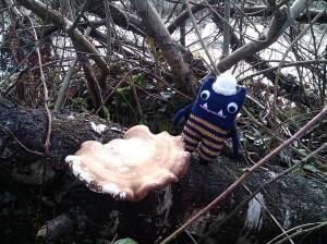 Explorer Beastie with Fungus
