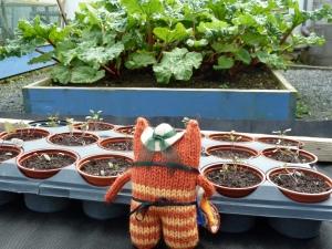Gardener Beastie with Rhubarb