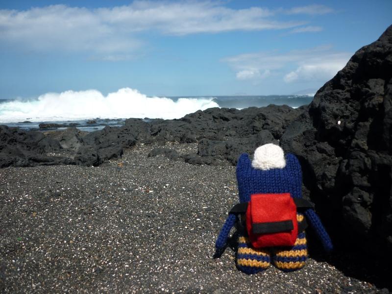 Explorer Beastie on Black Sand Beach