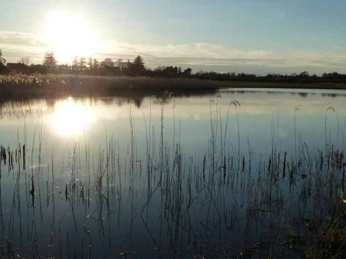Lake, Roscommon