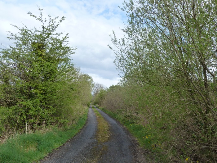 Road, Roscommon