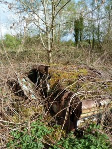 Abandoned Car, Roscommon