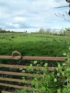 Gate, Roscommon