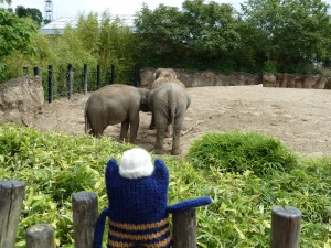 Explorer Beastie Watching the Elephants