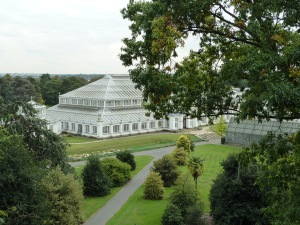 Temperate House from the Treetop Walkway