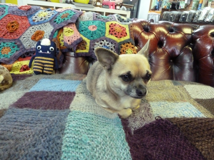 Explorer Beastie at I Knit