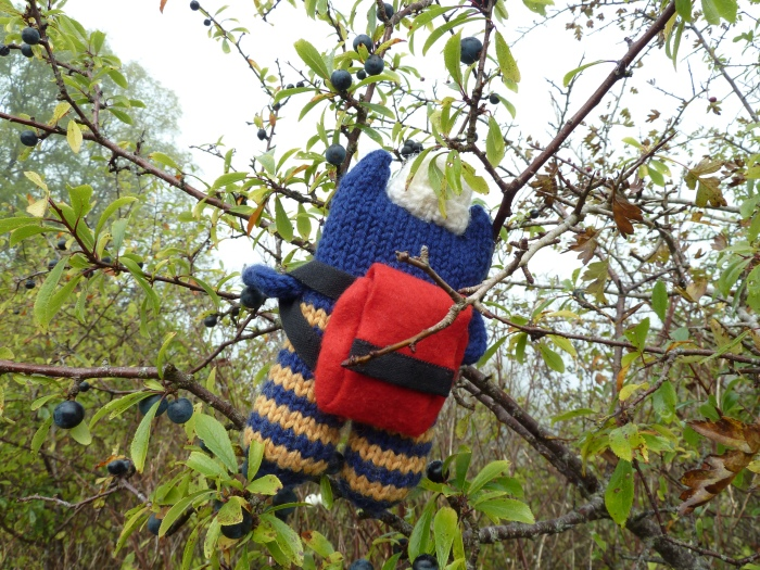 Explorer Beastie Picking Sloes