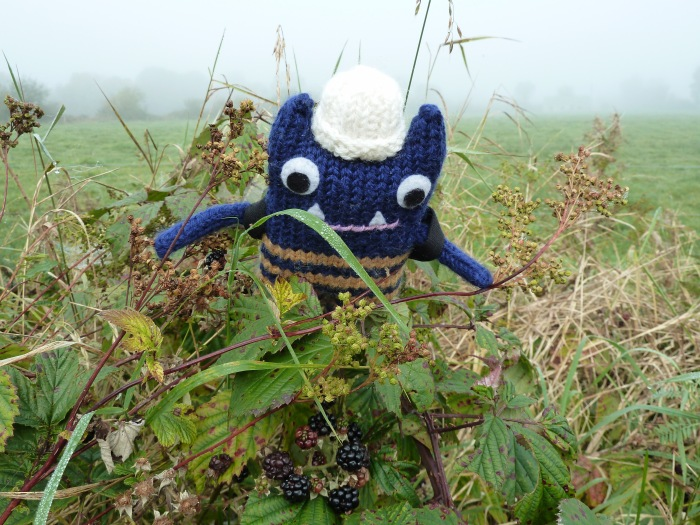 Explorer Beastie finds Blackberries
