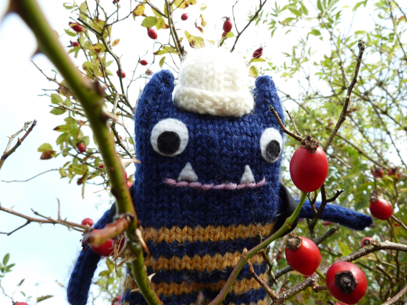 Explorer Beastie with Rosehips, by CrawCrafts Beasties