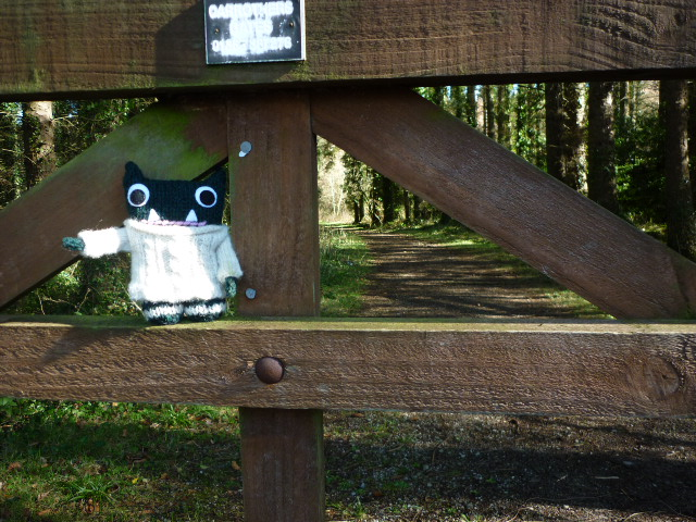 Paddy at the gate - CrawCrafts Beasties/Heather Crawford