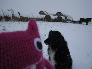 Reader Beastie with Jiggs the Ranch Dog - CrawCrafts Beasties/N Couture
