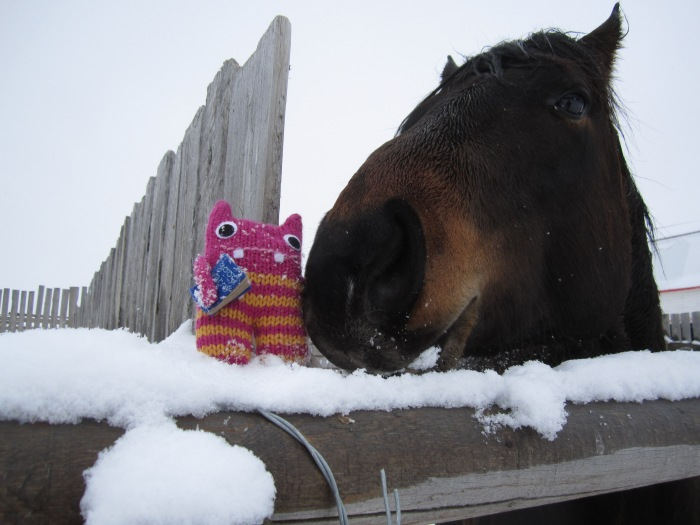 Reader Beastie with one of the ranch horses - CrawCrafts Beasties/N Couture