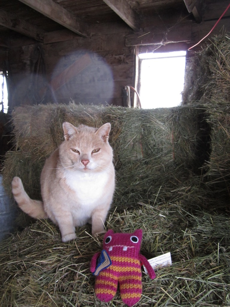 Reader Beastie hangs out in the barn with his new feline friend - CrawCrafts Beasties/N Couture
