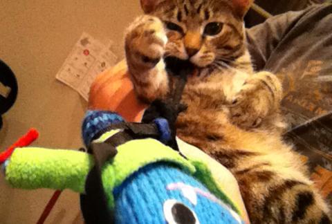 Climber Beastie with his new friend Amelie - J Donaldson/CrawCrafts Beasties