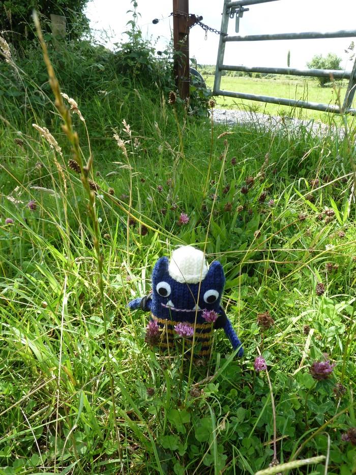 Explorer Beastie Stops to Smell the Flowers - CrawCrafts Beasties