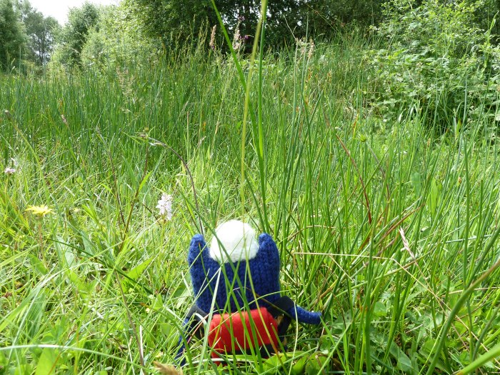 Explorer Beastie in the Long Grass - CrawCrafts Beasties