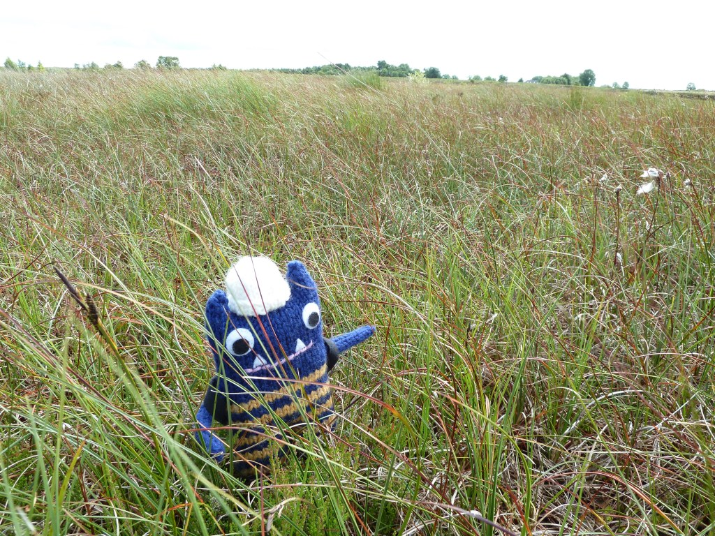 Explorer Beastie with the Bog Plants - CrawCrafts Beasties
