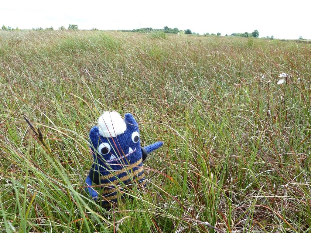 Explorer Beastie with the Bog Plants - CrawCrafts Beasties