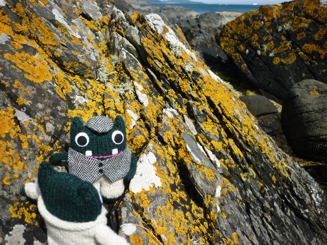 Paddy and Plunkett Take the Scenic Route - H Crawford/CrawCrafts Beasties