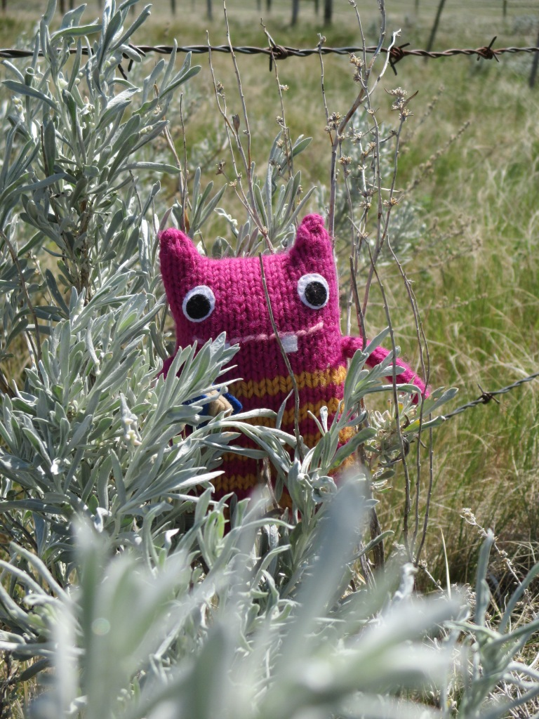Reader Beastie Relaxes in the Sunshine - N Couture/CrawCrafts Beasties