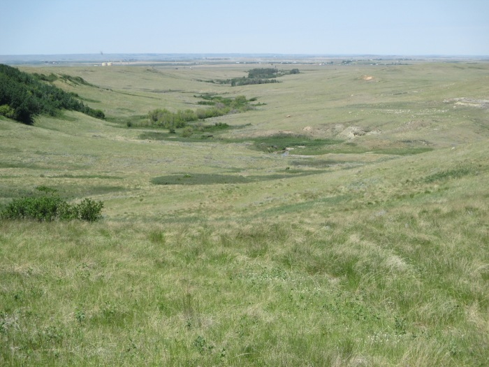 View of Big Coulee Pasture - N Couture/CrawCrafts Beasties
