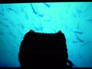 Diver Beastie Doing Dive Research - CrawCrafts Beasties