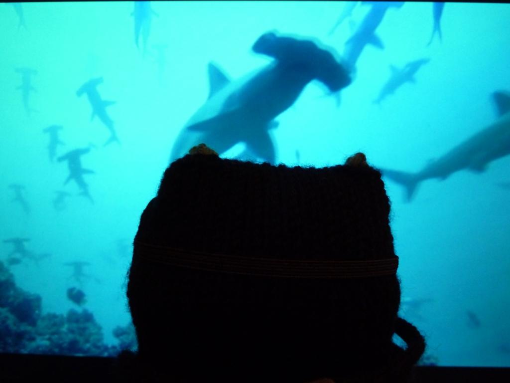 This Must be Underwater Love... CrawCrafts Beasties