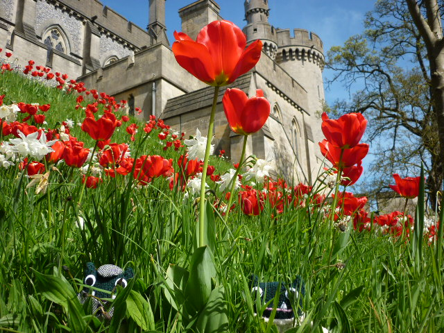 Paddy and Plunkett at Arundel Castle - H Crawford/CrawCrafts Beasties