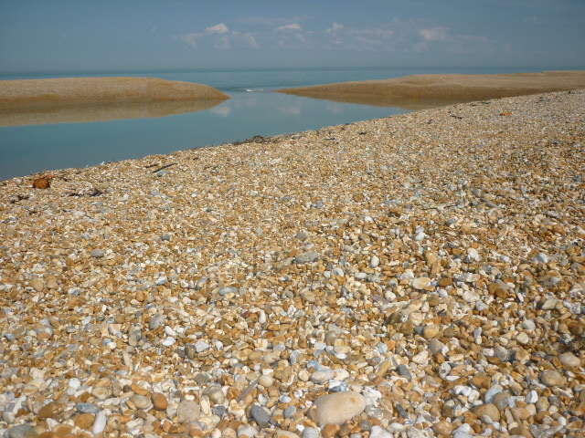 The Beach At Dungeness - H Crawford/CrawCrafts Beasties
