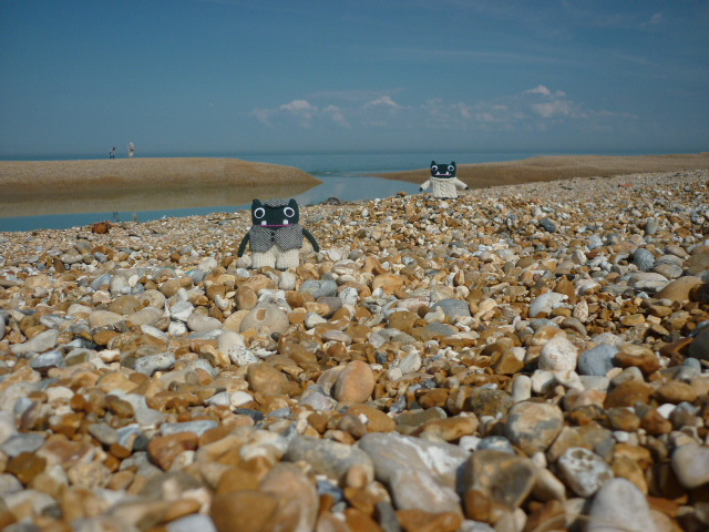 Paddy and Plunkett at Dungeness Beach - H Crawford/CrawCrafts Beasties