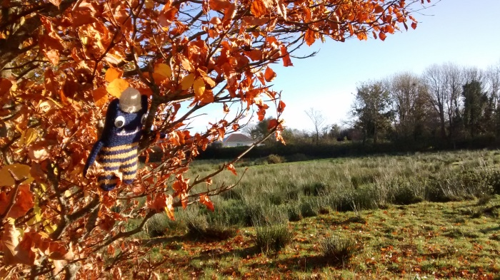 Late Autumn Colours With Explorer Beastie - CrawCrafts Beasties