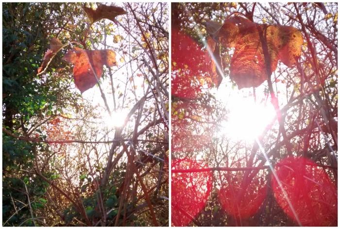 Leaf Tapestry - CrawCrafts Beasties