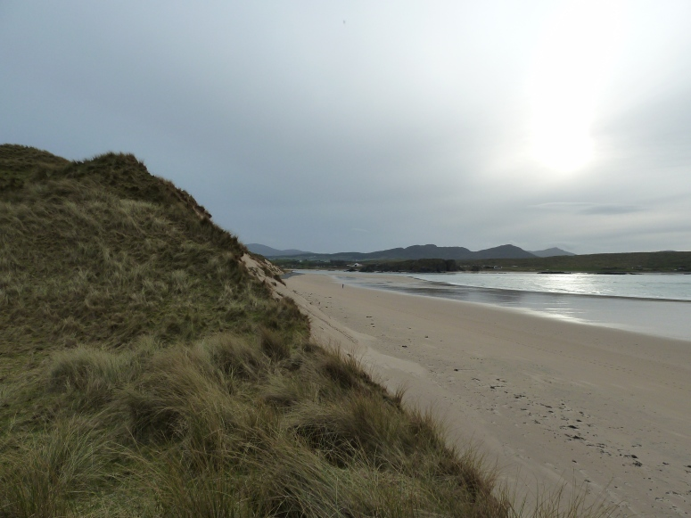 View Along Five Finger Strand - CrawCrafts Beasties