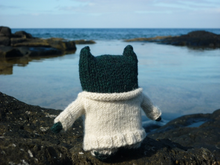 Paddy Discovers Rock Pools - H Crawford/CrawCrafts Beasties