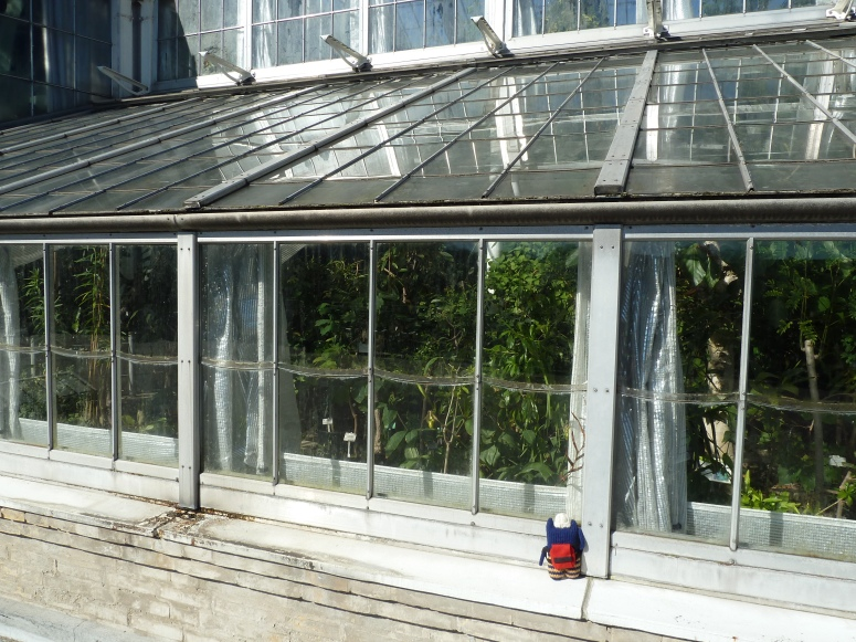 Peeking Inside the Palm House - CrawCrafts Beasties