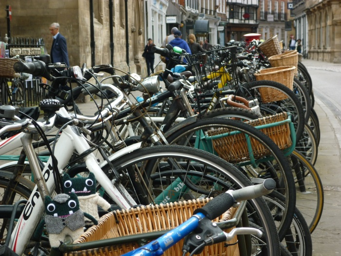 Paddy and Plunkett Cycle Cambridge! H Crawford/CrawCrafts Beasties