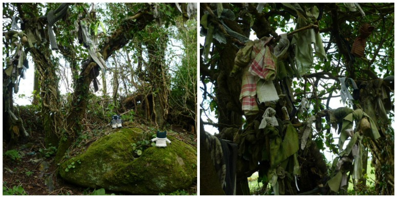 Rag Trees at the Holy Well - H Crawford/CrawCrafts Beasties