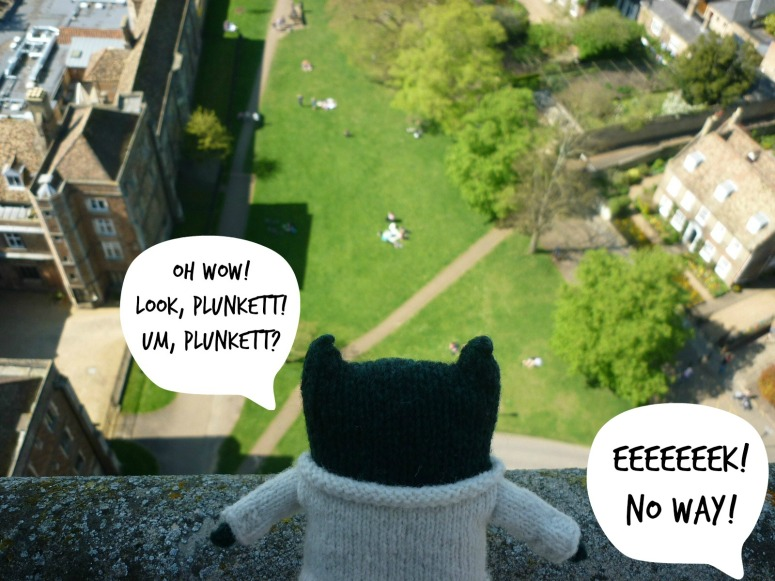 Paddy's View From the Tower - H Crawford/CrawCrafts Beasties