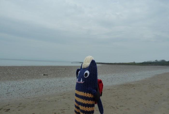 A Murky Day on the Beach - CrawCrafts Beasties