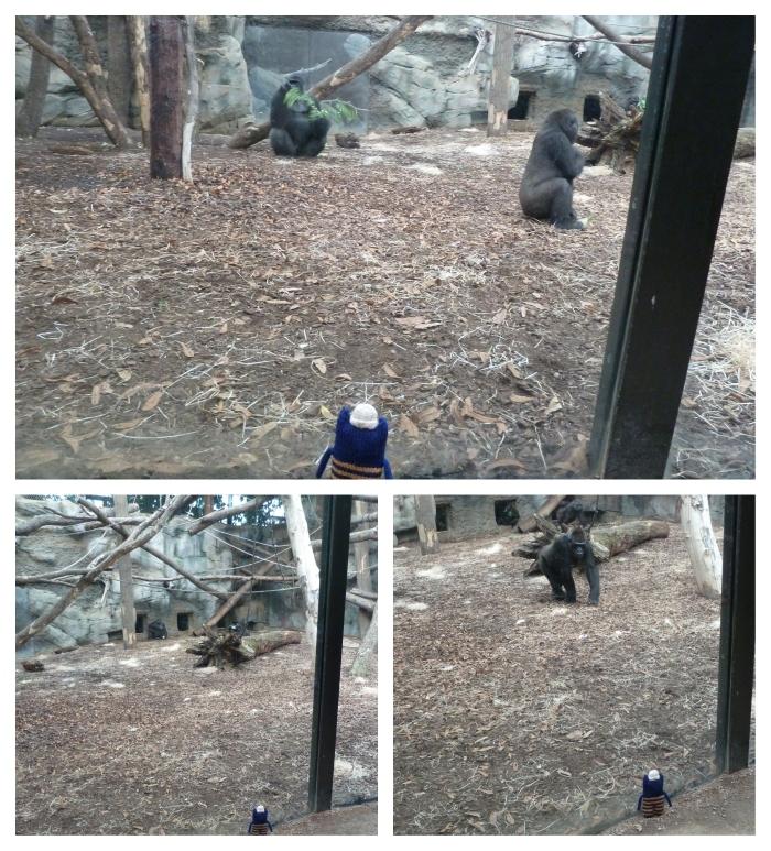 Gorillas at Frankfurt Zoo - CrawCrafts Beasties