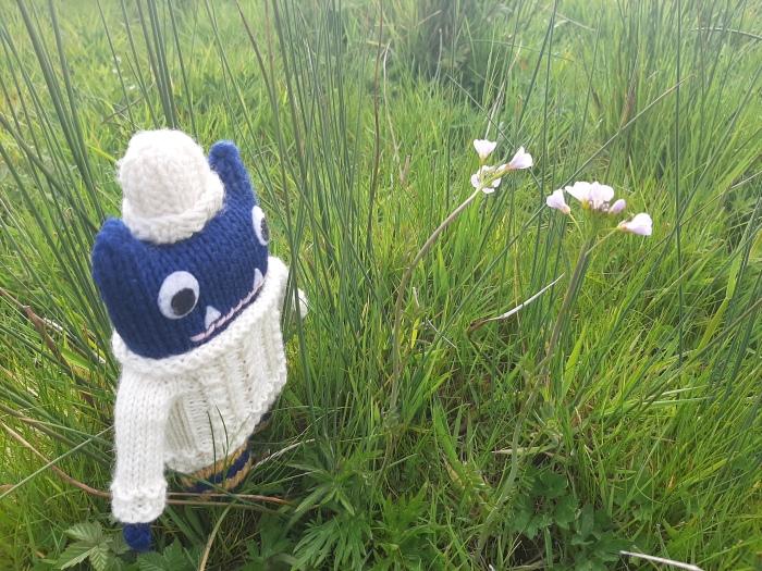 Mystery Flowers - Irish Countryside - CrawCrafts Beasties