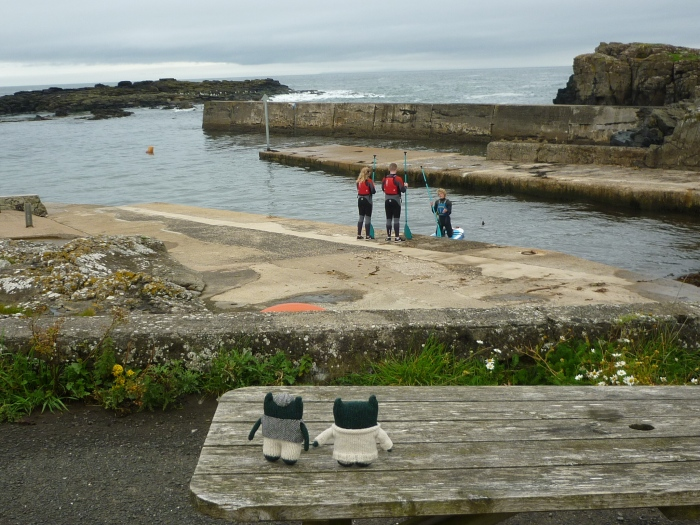Paddleboarding in Dunseverick Harbour - North Antrim Coast - H Crawford/CrawCrafts Beasties
