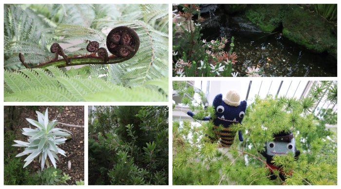 Plants of the Temperate House - CrawCrafts Beasties
