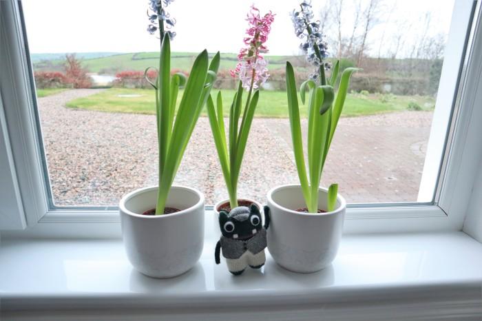 Plunkett with Hyacinths - CrawCrafts Beasties