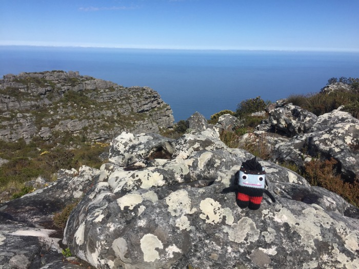 The View From Table Mountain - S Allen/CrawCrafts Beasties