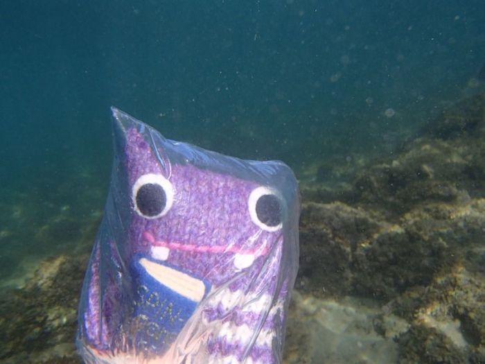 Underwater Adventuring - Extreme Beastie Photography
