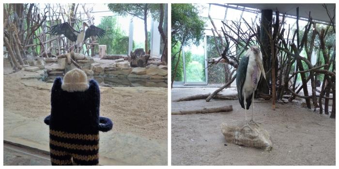 Marabou Stork at Frankfurt Zoo - CrawCrafts Beasties