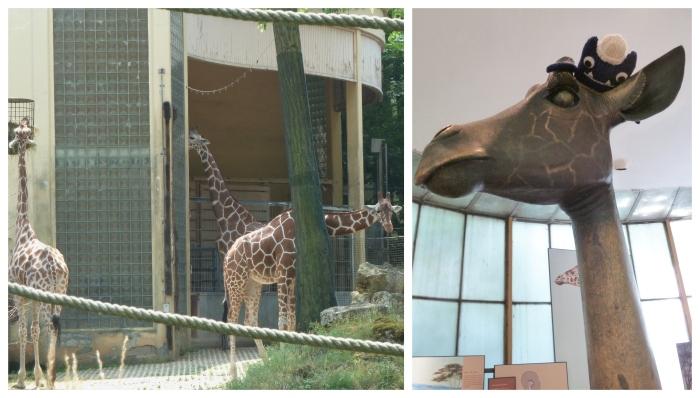 Giraffes at Frankfurt Zoo - CrawCrafts Beasties