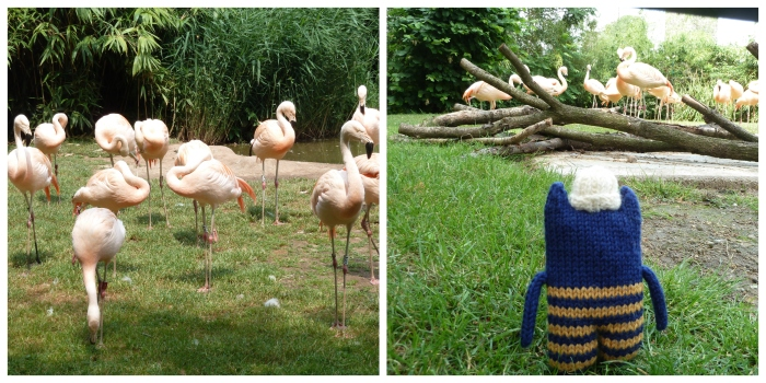 Flamingos at Frankfurt Zoo - CrawCrafts Beasties