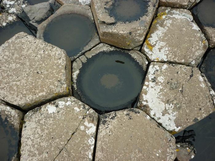 Hexagonal Rocks at The Giant's Causeway - H Crawford/CrawCrafts Beasties